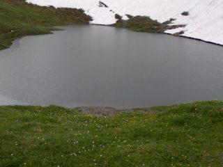 pioggia nel laghetto