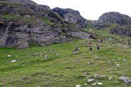 Il ripido ma bel sentiero che porta al lago di Goletta
