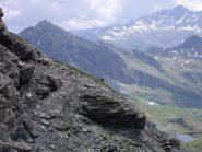 stambecco sulla cresta... verso la Pointe du Lac Long...