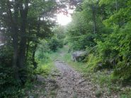 sentiero alla partenza dopo il ponte della vagliotta