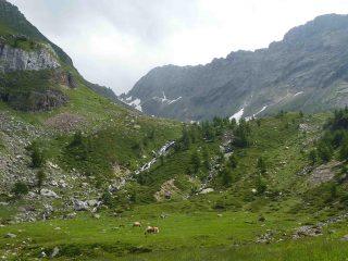 il vallone di Tamia