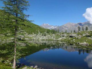Lago e Ciamarella