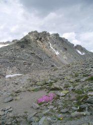 anticima roche chardonnet dal colle muande