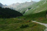 salendo il tratto iniziale e pianeggiante della Val Fourane (7-8-2013)