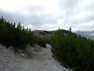 in costa dopo mont Agnellino