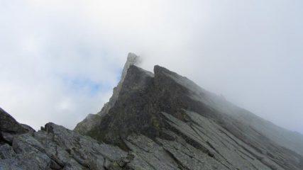 Nebbie sulla cresta