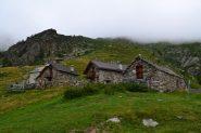 Alpe Colla (2001 m)