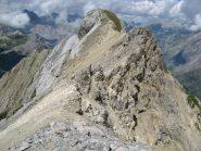 La cresta vista dall'anticima