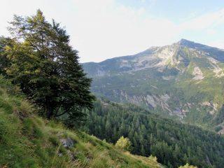 Tignolino visto da Alpe Roi
