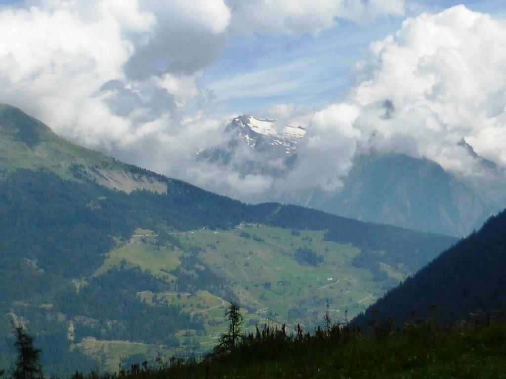 all'alpe Ars con vista sul M.Gelè