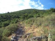 sentiero di salita