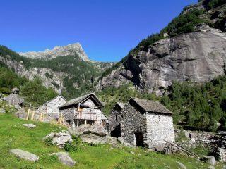 Alpe Calnegia
