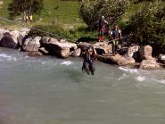 Tirolese