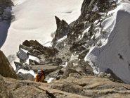 scalando sull'Androsace