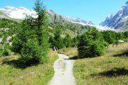 salendo verso la fine del vallone erboso in direzione della Anenhutte (30-8-2013)