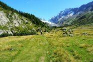 la prima parte del vallone seguito...prati verdi e ghiacciaio ancora lontano (30-8-2013)