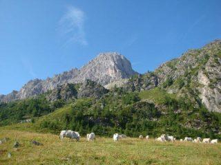 Rocca La Meja dalle Grange Q 2160