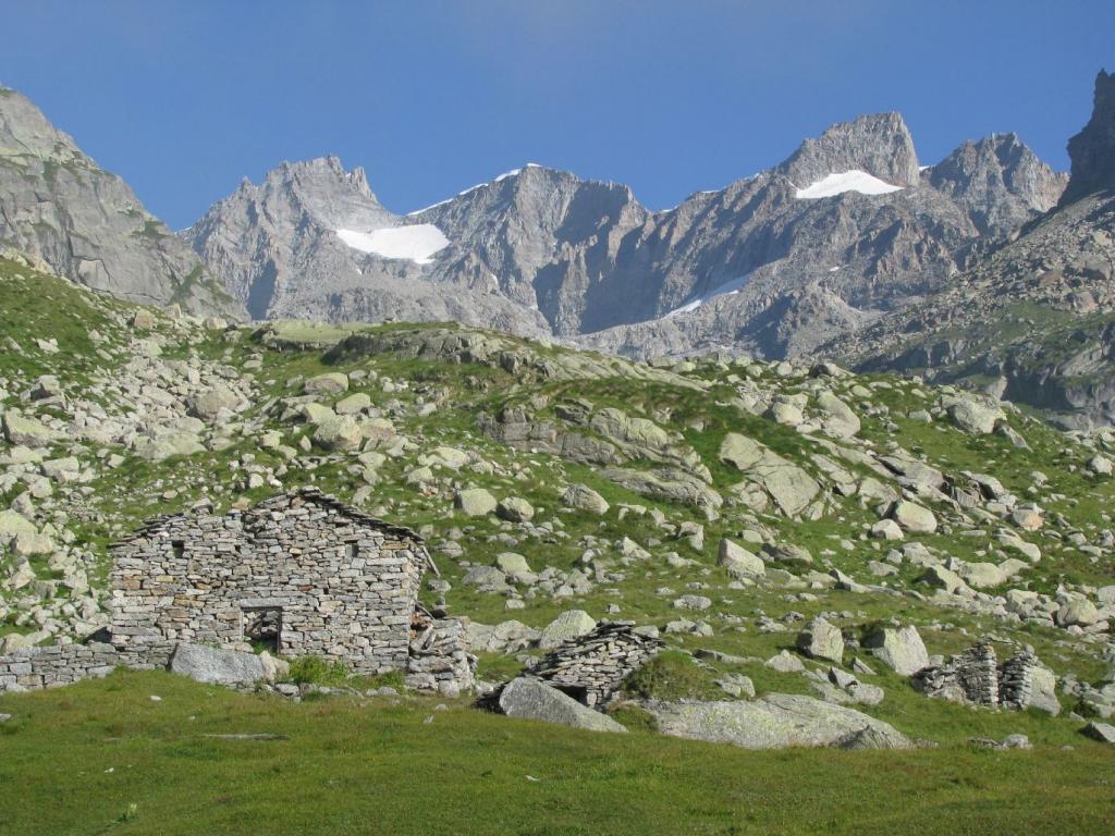 Alpe La Bruna inferiore con Gran Paradiso e Punta Ceresole