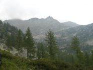 Sguardo verso il Bellagarda dall'Alpe Pian Pesse