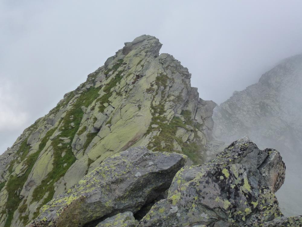 capre sulla cresta prima della Quota 2626