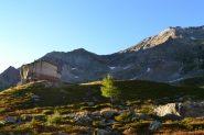 Piani Alti di Rosareccio (2090 m)