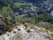 roccia e arbusti