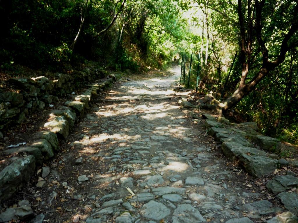 la via Julia Augusta