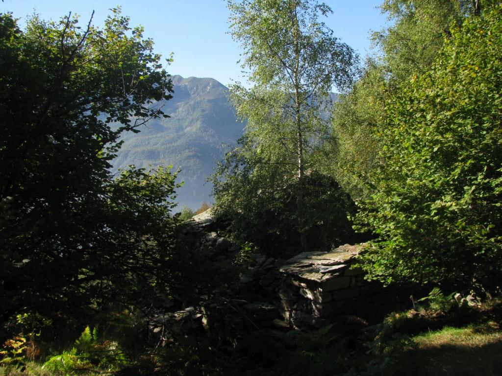 Ruderi Alpe Simma superiore
