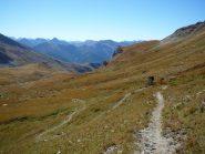 versante Val Maira...single track erboso