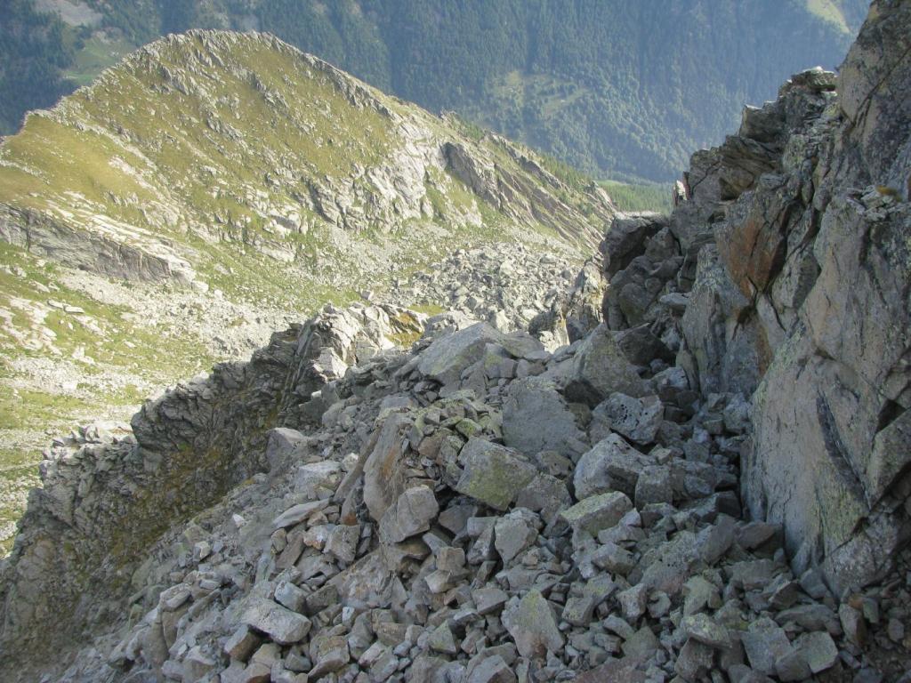 Dalla Cima Fer, vista su Punta e Alpe Antena