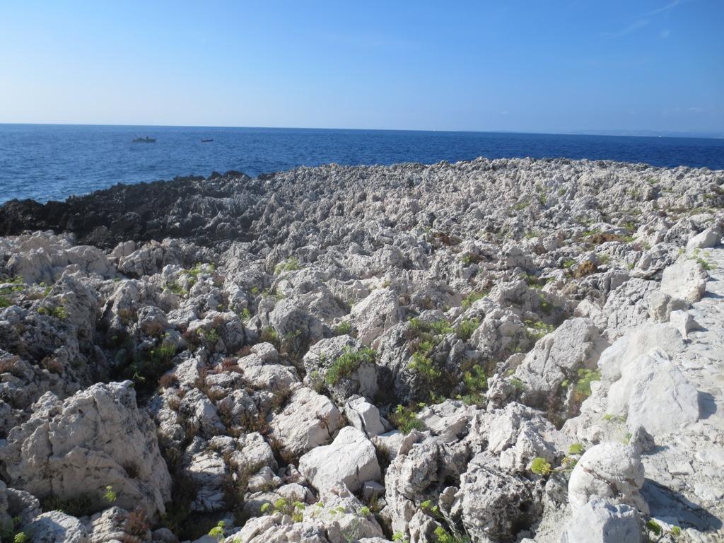 rocce aguzze