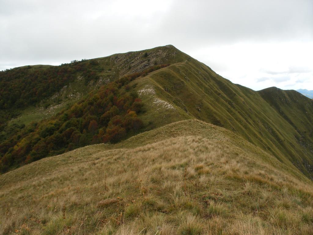 Frontè (Monte) e Monte Monega da Case Fascei, anello 2013-10-08