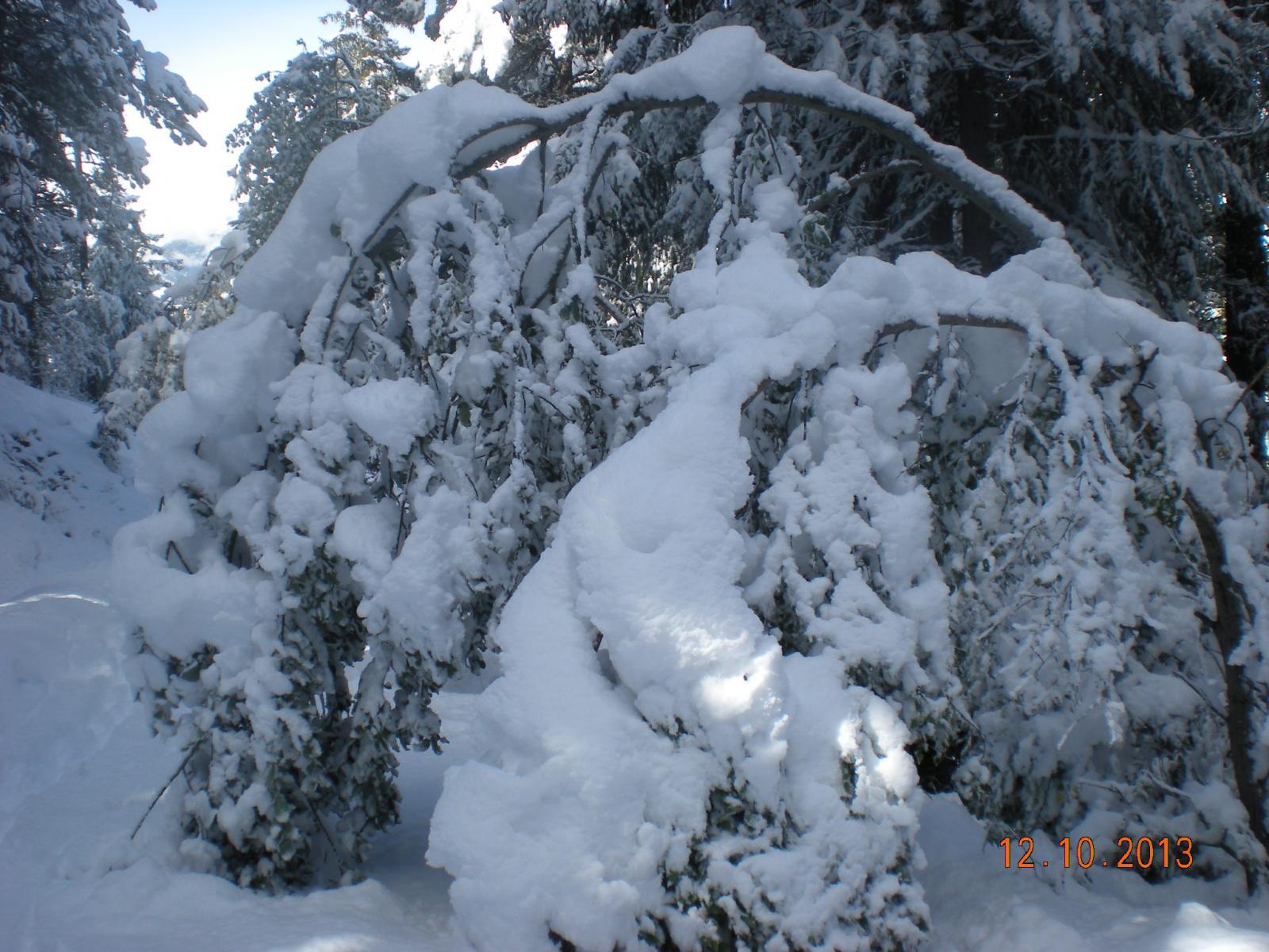 neve sempre più abbondante