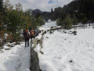 In salita in prossimità dell'alpe Gorta