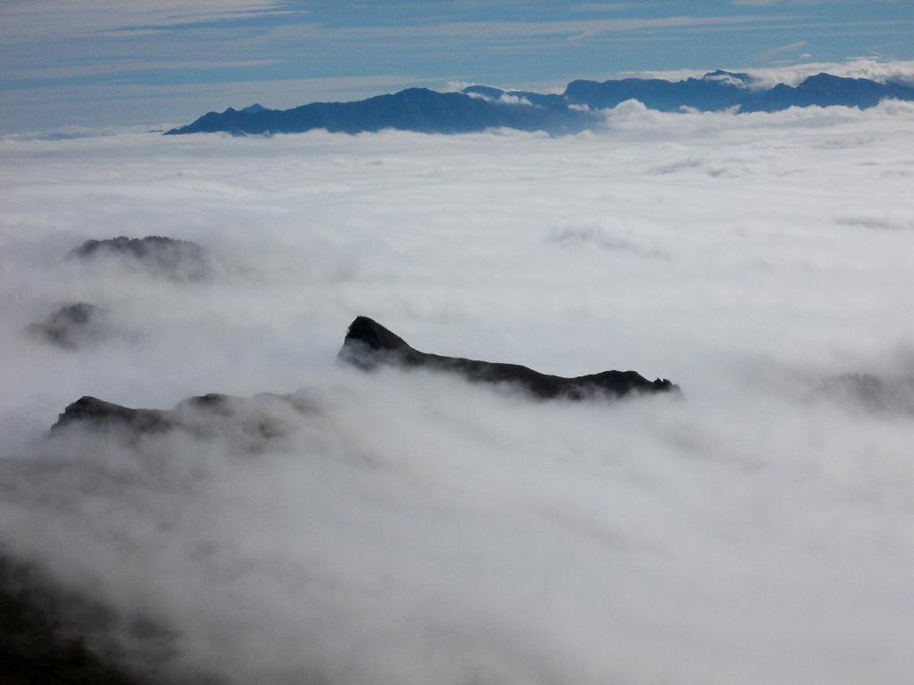 la Rocca Radevil emerge dalla nebbia