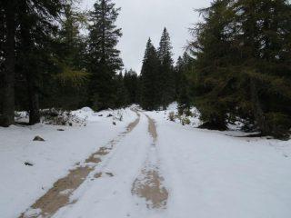 Intanto aumenta la coltre nevosa