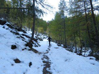 Salendo lungo il sentiero