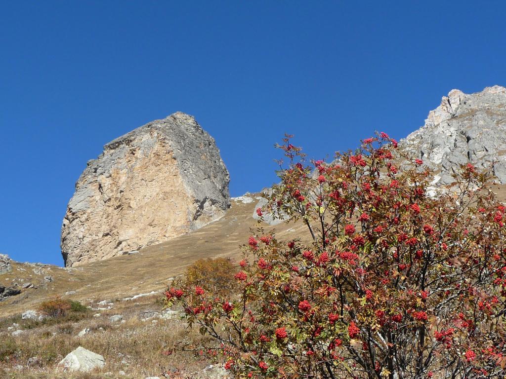 Senghi (Rocca) da Sant'Anna 2013-10-17