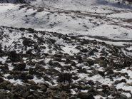 08 - neve insidiosa tra grossi blocchi sotto il colle Livournea (1024x768)