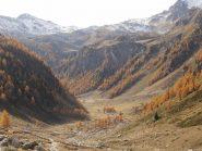 13 - autunno (1024x768)