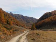 15 - autunno (1024x768)