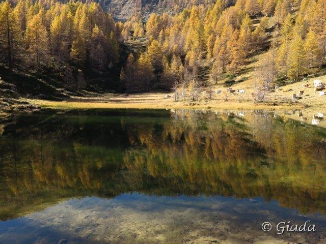 Missun o Missoun (Cima) da Valcona, anello per Cima Farenga e Cima Ventosa 2013-11-07