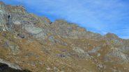 cresta dai pressi dell'alpe Muanda inf.