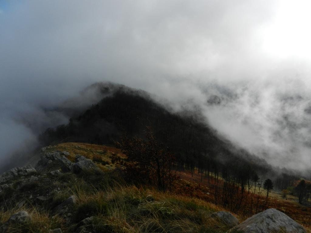 Effetti della nebbia scendendo dallo Zatta