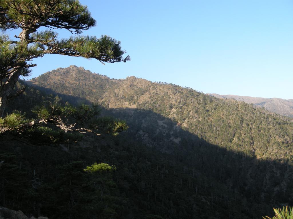 il profilo della cresta visto dal sentiero stella bianca lungo la discesa