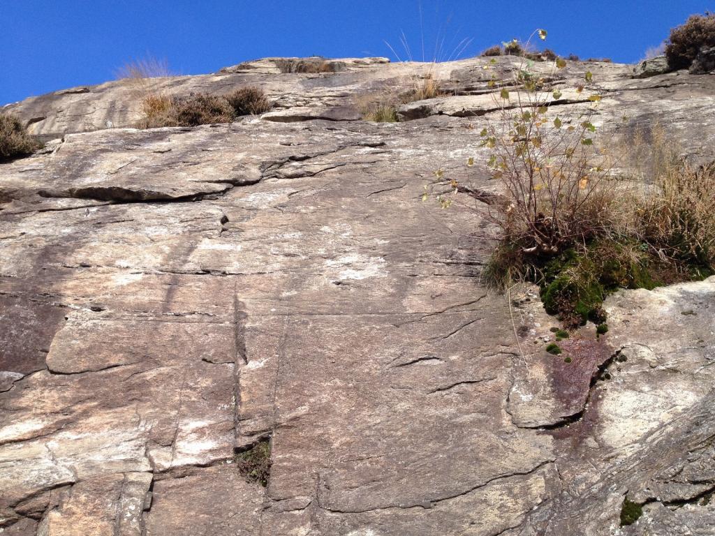 Bracco (Monte) Chinablack 2013-11-10