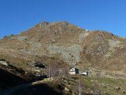 Alpi Alpuccio