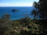 L'Isola Gallinara fa capolino tra gli ulivi