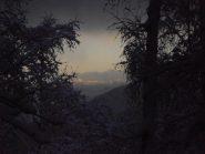 01 - magia della neve nel bosco al tramonto (1024x768)