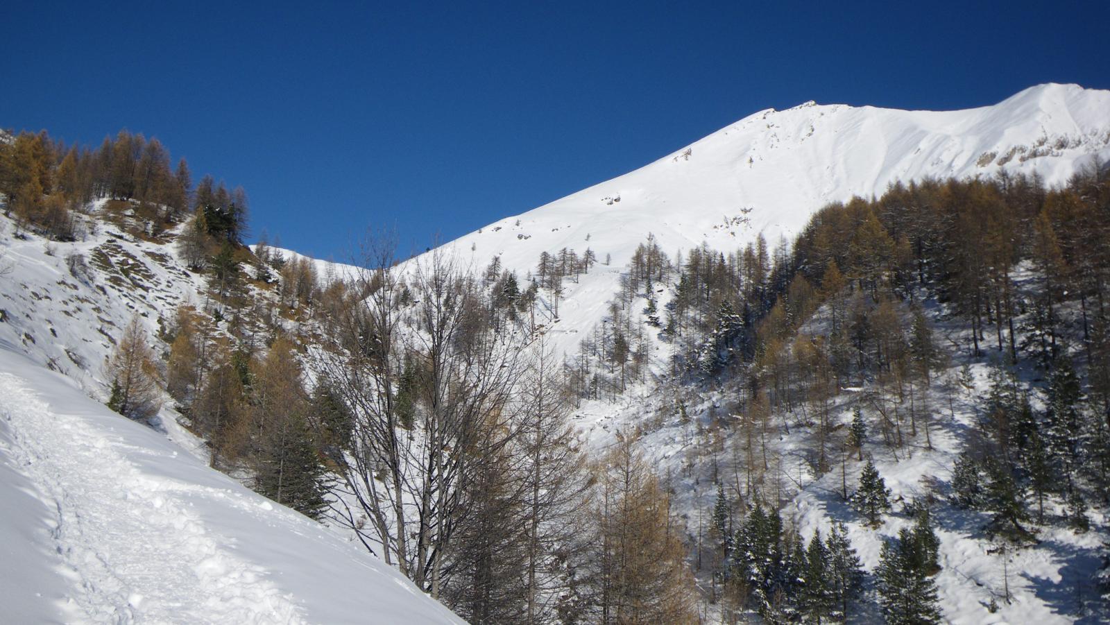 all'inizio di Pian dell'Alpe
